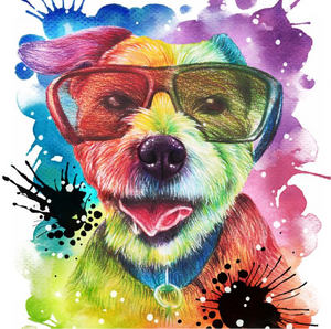 Colourful pet portrait, Rainbow colour pet drawing