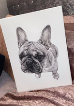 Load image into Gallery viewer, Black & White Pencil Portrait-painted-paws