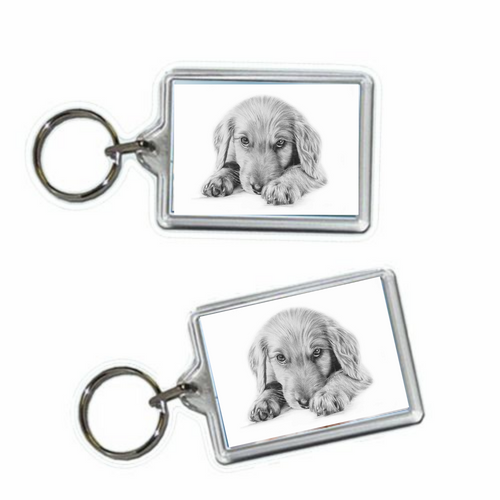 Add a keyring to your order?-painted-paws