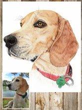 Load image into Gallery viewer, Pet dog pencil portrait