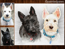 Load image into Gallery viewer, Pet dog portrait in pencil