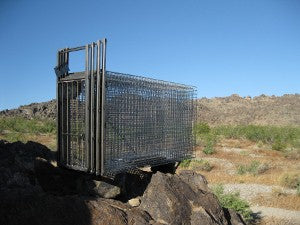 Camtrip Bobcat Cages-Set of 3