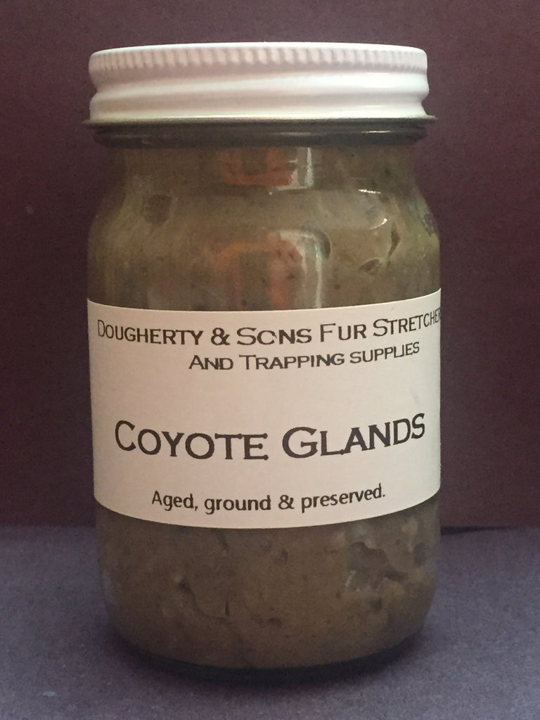 Coyotes Glands (aged)