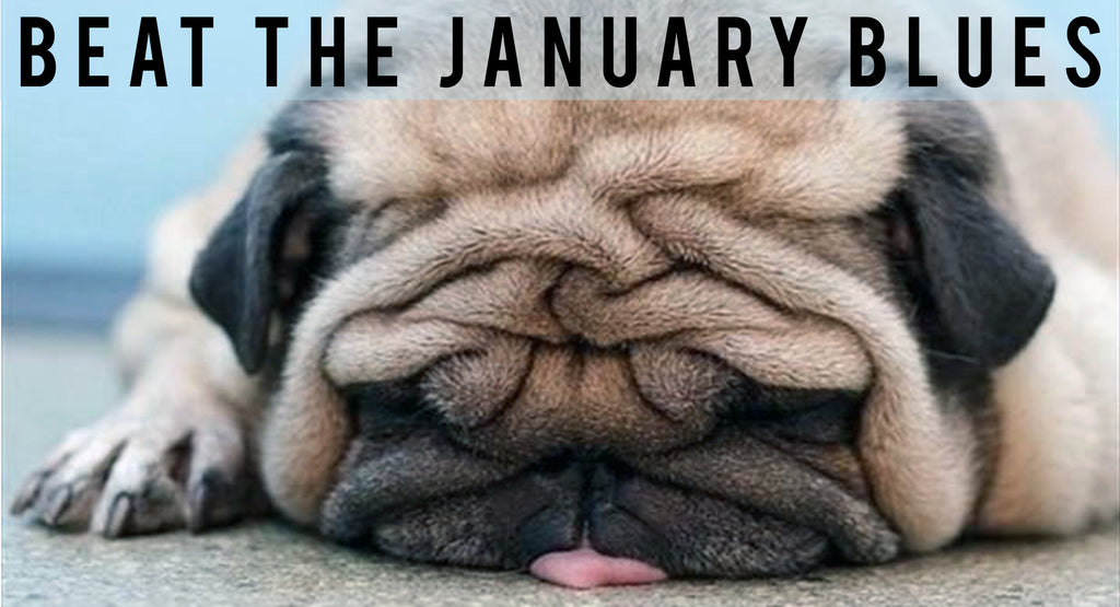 6 Ways To Make It Through The January Blues