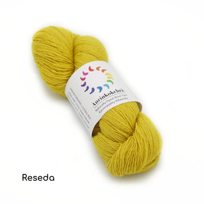 Aurinkokehrä - Plant-dyed Wool Yarn - Single Color