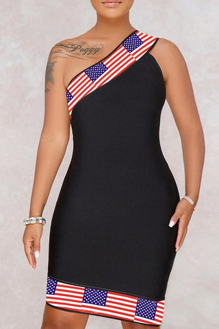 Modishshe Flag Print Mini Dress