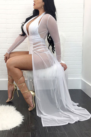 Modishshe Sexy Sheer Mesh Party Dress