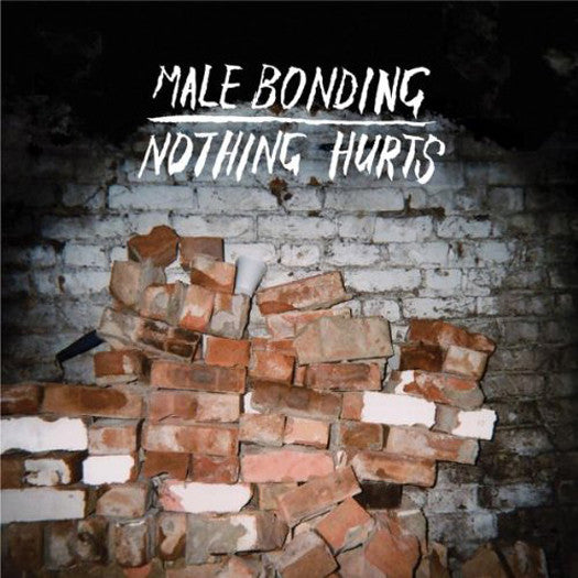 MALE BONDING NOTHING HURTS LP VINYL NEW 33RPM 2010