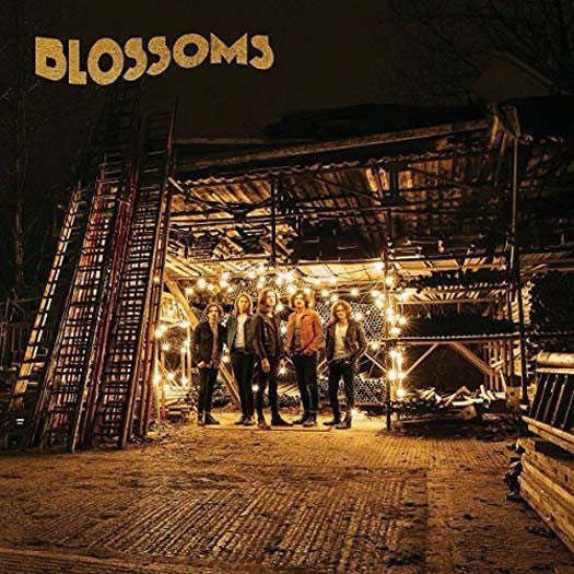 BLOSSOMS Blossoms LP Vinyl NEW 2016