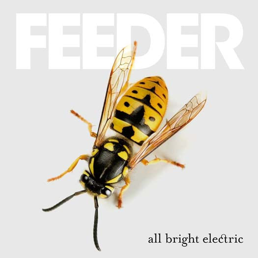 FEEDER All Bright Electric 2LP Colour Vinyl NEW