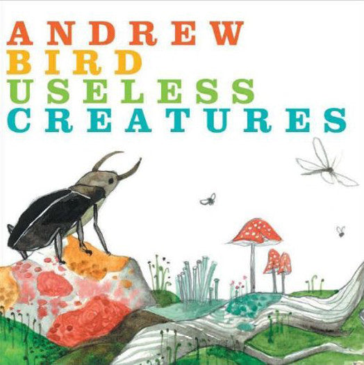 ANDREW BIRD USELESS CREATURES LP VINYL NEW (US) 33RPM