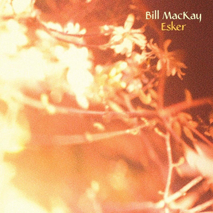 BILL MACKAY Esker LP Vinyl NEW 2017