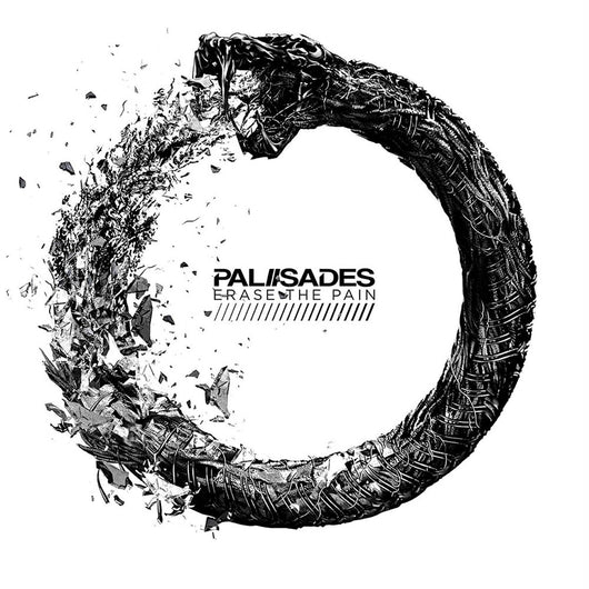 Palisades Erase the Pain Vinyl LP New 2018