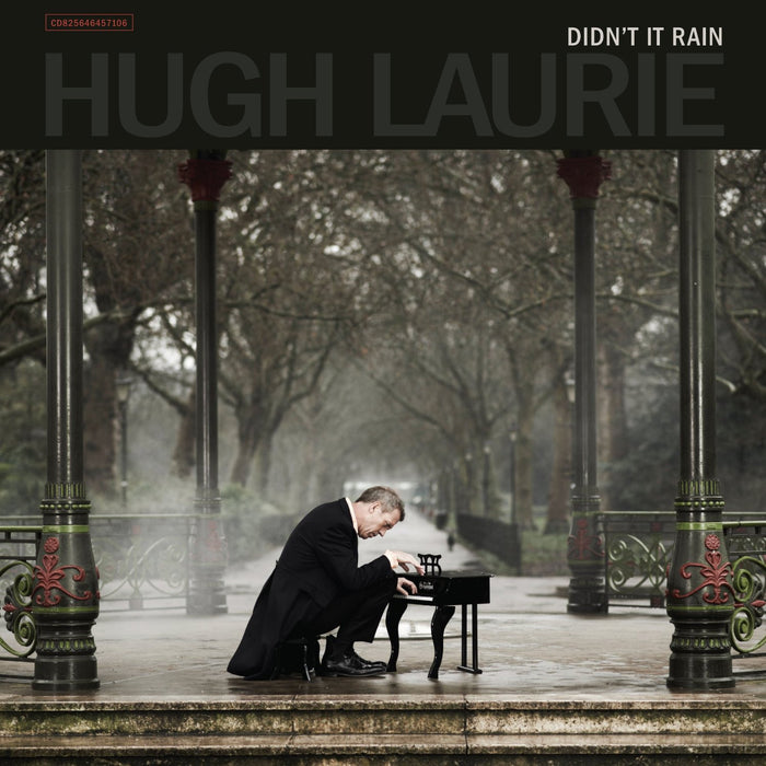 HUGH LAURIE DIDN'T IT RAIN LP VINYL 33RPM NEW 2LP