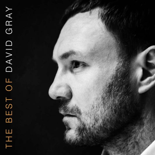DAVID GRAY The Best Of LP Vinyl Compilation NEW 2016