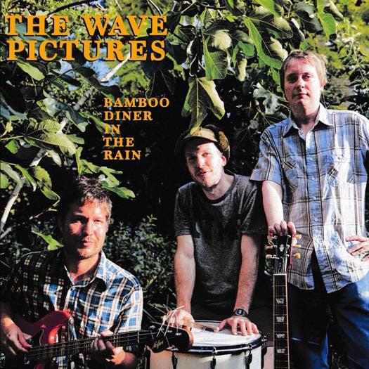 THE WAVE PICTURES Bamboo Diner In The Rain LP Vinyl NEW 2016