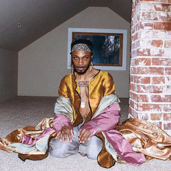 JPEGMAFIA - All My Heroes Are Cornballs Double Vinyl LP New Out 28/02/20