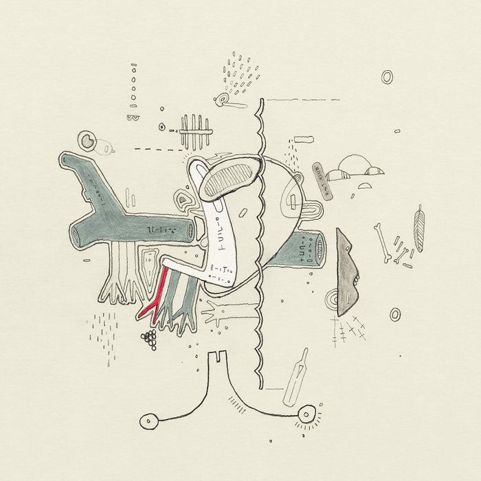 Frightened Rabbit Tiny Changes : A Celebration of Midnight Organ Fight Vinyl LP 2019