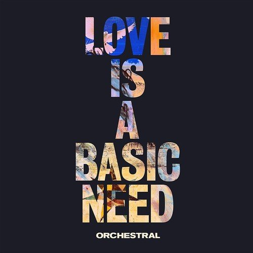 EMBRACE Love Is A Basic Need Orchestral Vinyl LP NEW 2018