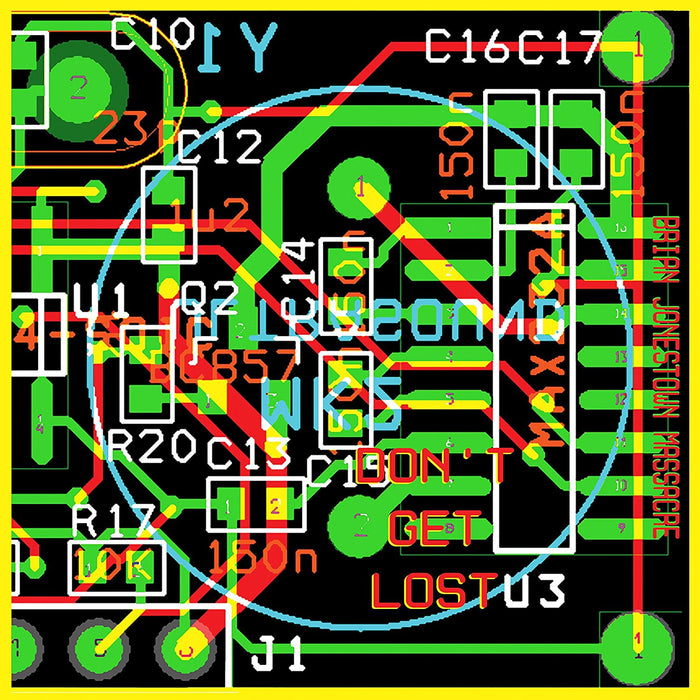 THE BRIAN JONESTOWN MASSACRE Dont Get Lost LP Vinyl NEW