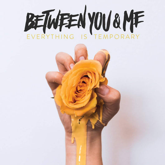 BETWEEN YOU AND ME Everything Is Temporary VINYL LP NEW 2018