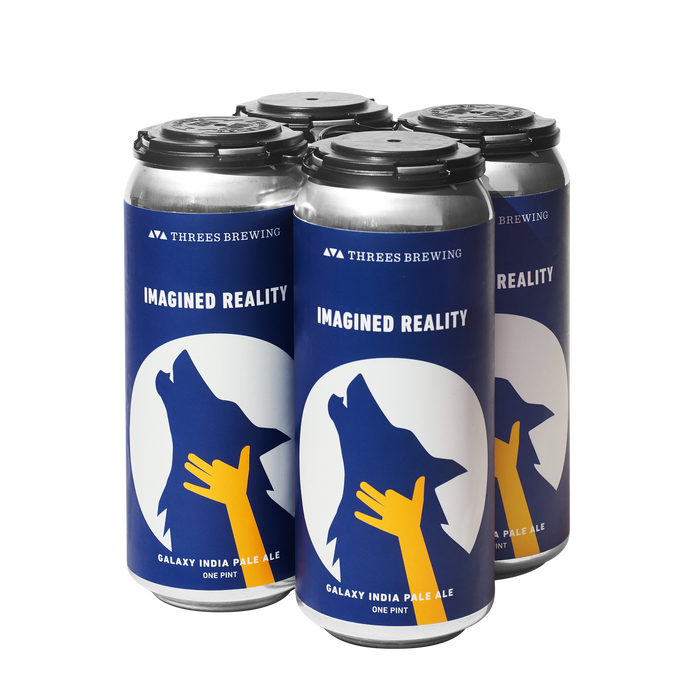 Imagined Reality 4-Pack <br> Galaxy IPA