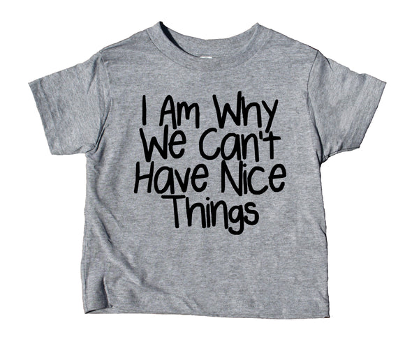 I Am Why We Can't Have Nice Things Toddler Shirt Funny Boy Girl Kids Birthday Clothing