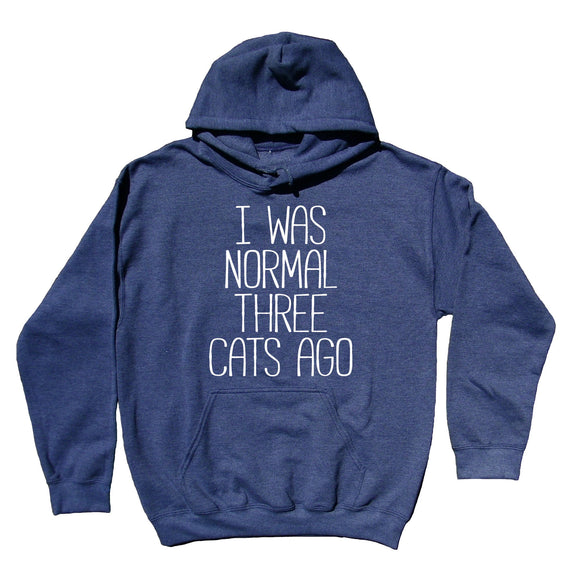Funny Cat Owner Hoodie I Was Normal Three Cats Ago Sweatshirt Kitten Lover Clothing