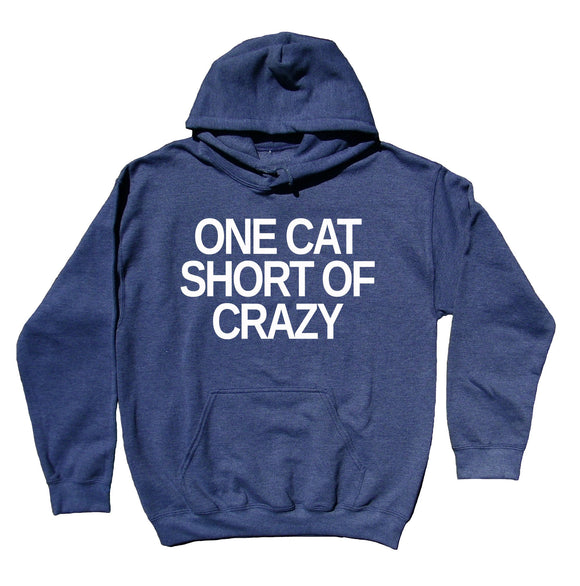 Crazy Cat Lady Hoodie One Cat Short Of Crazy Sweatshirt Cute Kitten Lover Cat Owner Gift