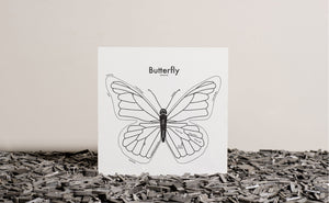 Butterfly Map Print
