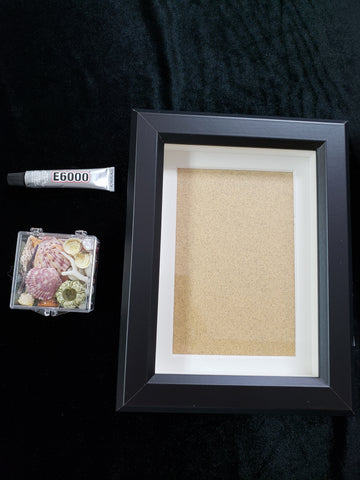 Mini Seashell Frame kit