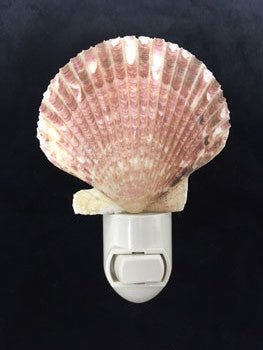 Pink Scallop Seashell Nightlight