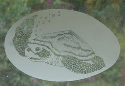 Sea turtle Window etchings