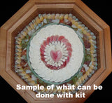 Sailors Valentine seashell Kit