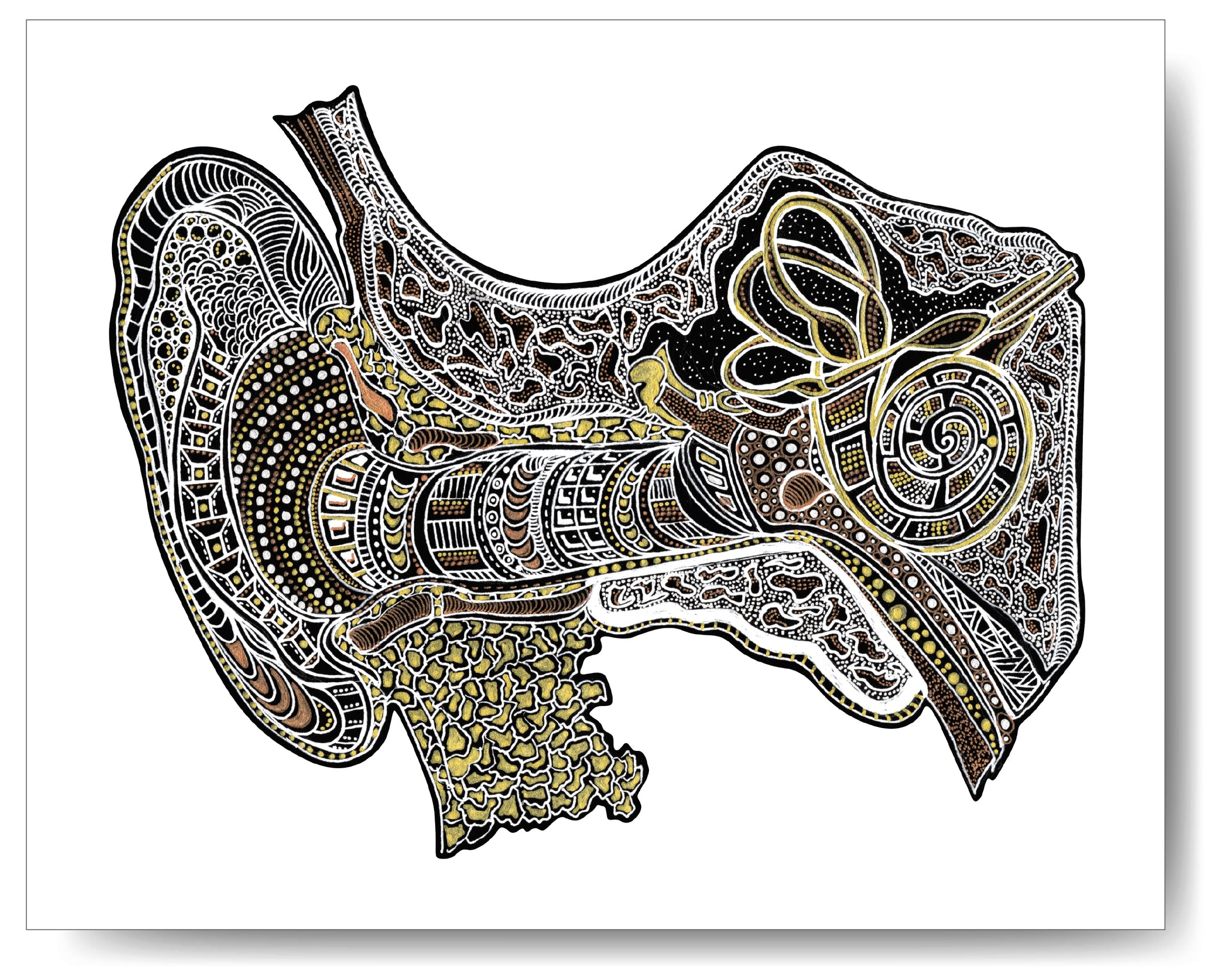 Metallic Ear Canal (Inner Ear) - 8x10 or 11x14