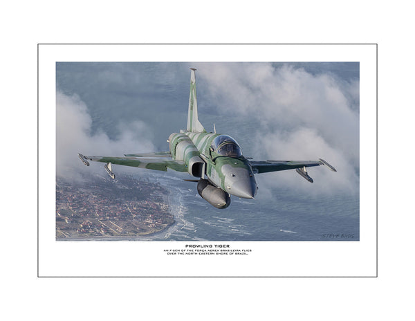 """Prowling Tiger"" Fine Art Aviation Print"