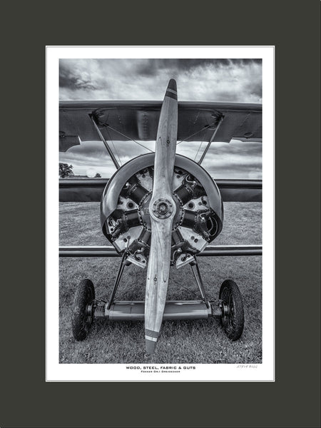 """Wood, Steel, Fabric & Guts DR1"" Fine Art Aviation Print"