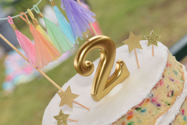 Rainbows-and-unicorn-birthay-duchess-and-goose-rainbow-party