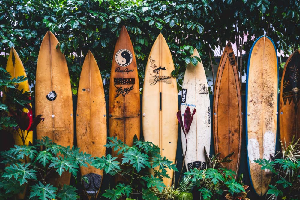 10 things about surfing you should know