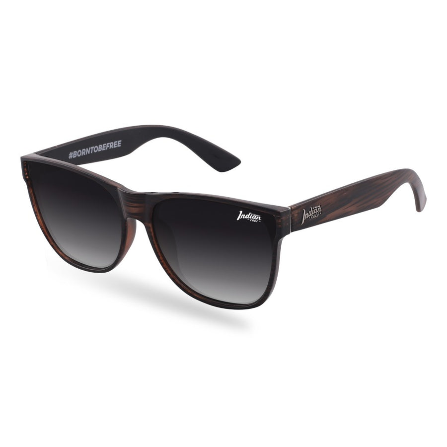 Gafas de Sol Ventura Brown / Black