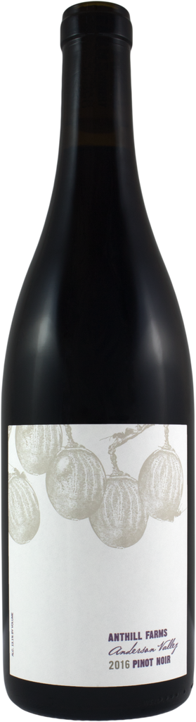 Anthill Farms Anderson Valley Pinot Noir 2017, Sonoma County, California