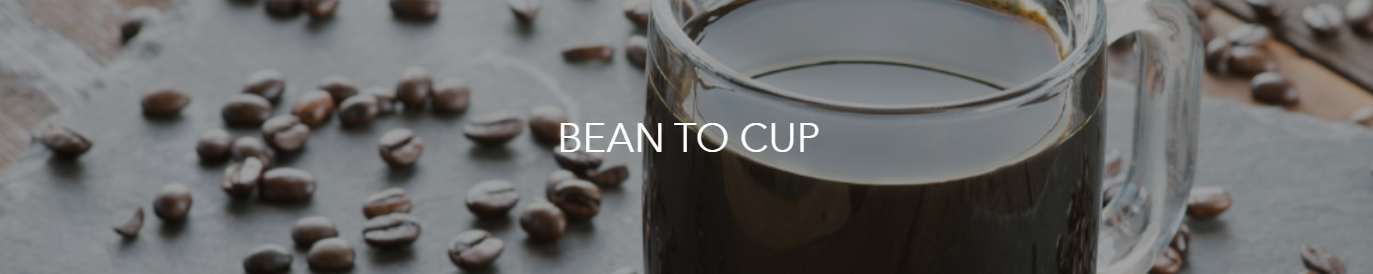 BEAN TO CUP COFFEE BREWERS