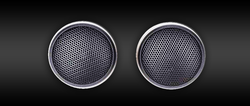 SQ-T1  Silk Dome Tweeters (Set)