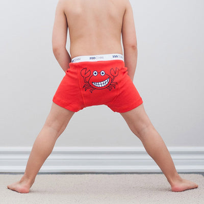 ZOOCCHINI Boys 3 Piece Organic Boxers Set - Chompy Chompers-1