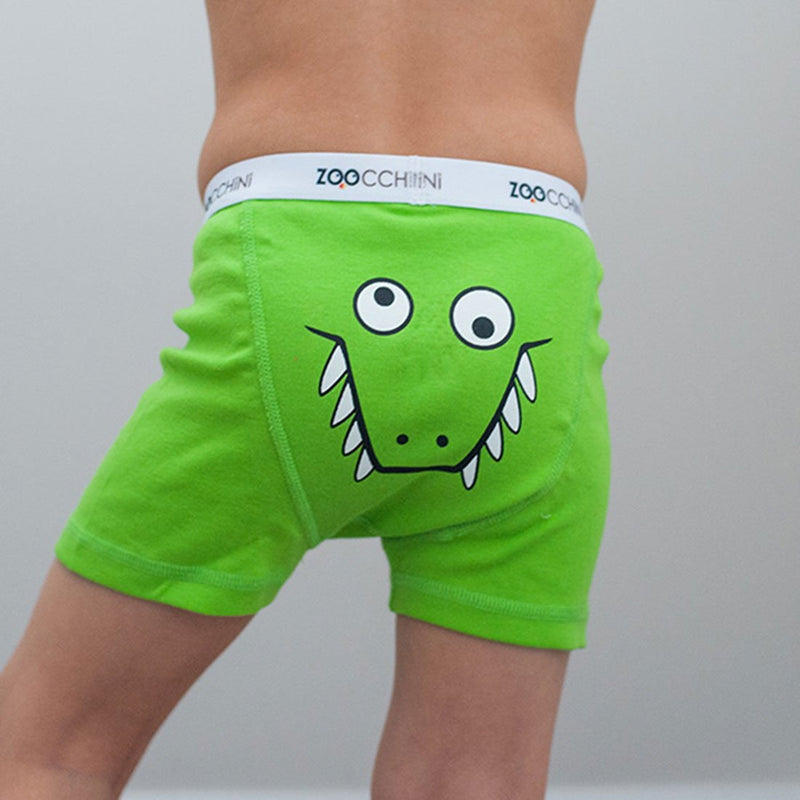 ZOOCCHINI Boys 3 Piece Organic Boxers Set - Chompy Chompers
