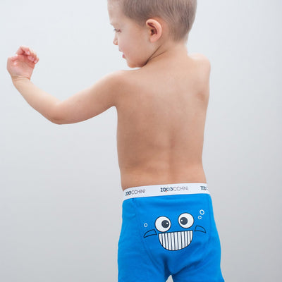 ZOOCCHINI Boys 3 Piece Organic Boxers Set - Chompy Chompers-3