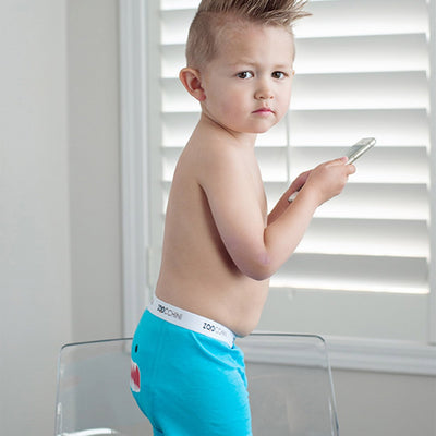 ZOOCCHINI Boys 3 Piece Organic Boxers Set - Monster Mash-1