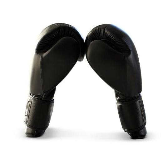 UNIT NINE Black Wolf Boxing Gloves 3