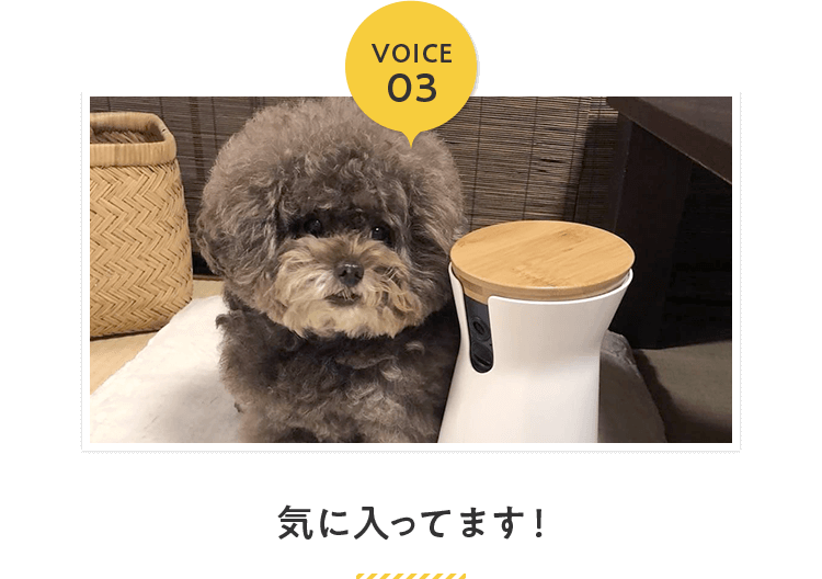 VOICE03:気に入ってます!