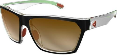 Ryders Loops Standard Lens Black-Silver-Green / Brown Lens Gradient